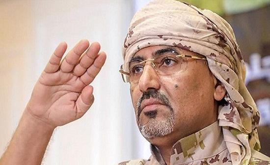 الزبيدي: نرحب بدعوة مجلس الأمن.. والحل في السعودية