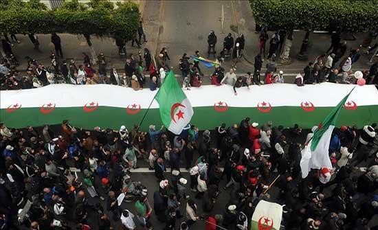 24 مليون جزائري مدعوون للتصويت بالانتخابات البرلمانية المبكرة
