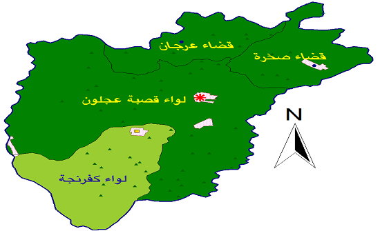 تربية عجلون تحتفل بمئوية الدولة واليوم الوطني للعلم