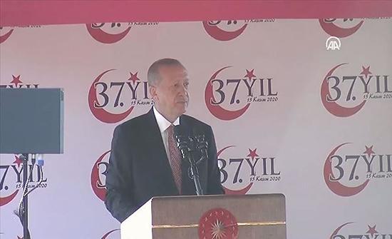 أردوغان: يجب التفاوض على أساس حل الدولتين في قبرص