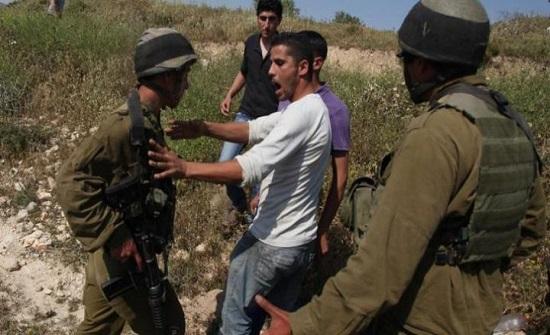 الاحتلال الاسرائيلي يطرد قاطفي الزيتون من أراضيهم جنوب نابلس
