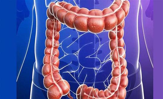 3 خرافات عن صحة الأمعاء منها الألياف