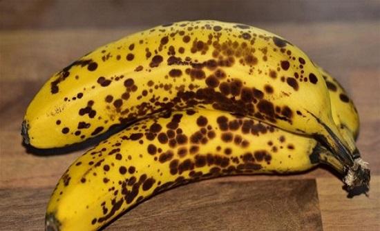 ما لا تعرفينه عن فوائد تناول الموز الأسود .. حماية من السرطان وفقر الدم