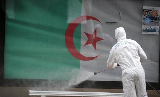 الجزائر: 13 وفاة و 556 إصابة جديدة بفيروس كورونا