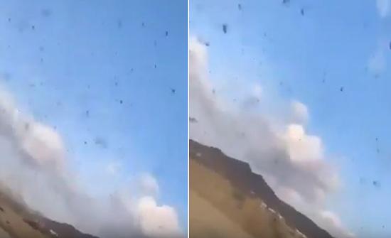 شاهد: أسراب من الجراد تغطي سماء الباحة
