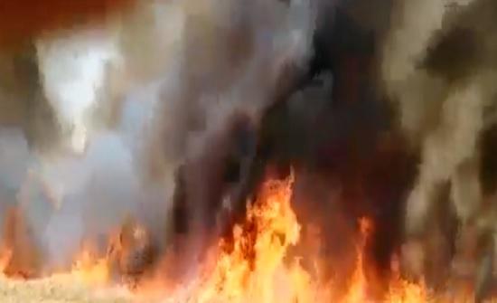 حريق مزرعة موز بمنطقة الشونة الشمالية