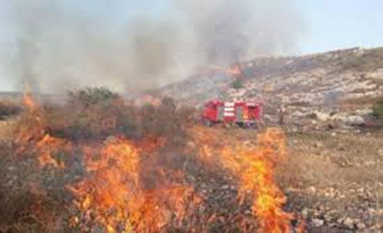 إخماد حريق أعشاب جافة وأشجار حرجية وأشجار مثمرة في محافظة جرش