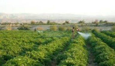 اتفاقية لإنشاء مواقع للزراعة المستدامة في وادي الأردن