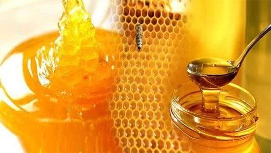تحذير: الملاعق المعدنية تحول عسل النحل لمادة شديدة السمية !