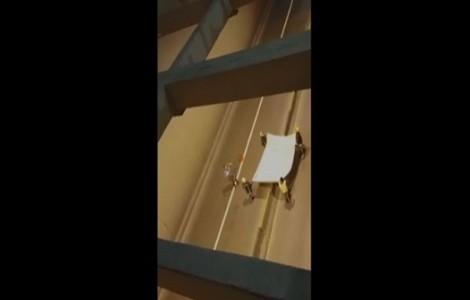 شاهد : إنقاذ قطة علقت في نفق الدوار السابع