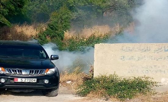 بالصور : بلدية السلط تبدأ حملة رش المبيدات الحشرية