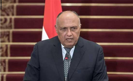 شكري: مصر برهنت على إرادتها لإنجاح مسار التفاوض بشأن سد النهضة