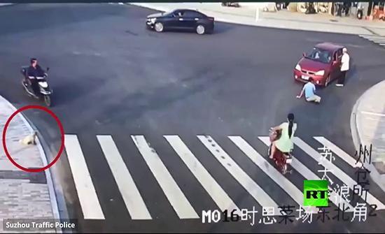 شاهد : كلب يعطي درسا بقواعد المرور في الصين