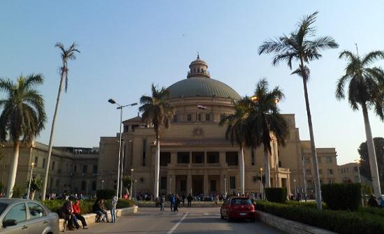 التعليم العالي : القبول بالجامعات المصرية مجاني – رابط