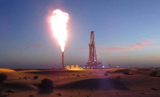 وكالة الطاقة الدولية تتوقع انخفاض الطلب على الغاز 3 %