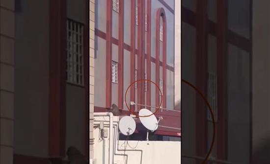بالفيديو: قرد في مكة يعاود الظهور.. والأهالي يطالبون بإبعاد خطره