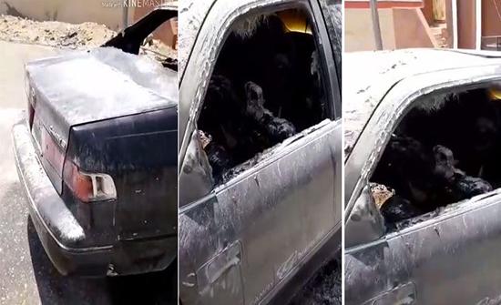 بالفيديو: بطارية هاتف تشعل سيارة في السعودية