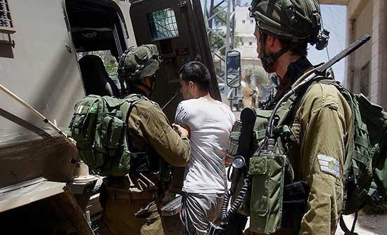 الاحتلال يعتقل 11 فلسطينيا بالضفة ويغلق مؤسسة زراعية بالبيرة