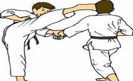 اتحاد التايكواندو يعلن نتائج فحص الترقية للحزام الأسود