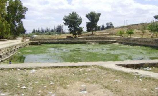 مياه الطفيلة تعد خطة لحل أزمة المياه في المناطق الجنوبية