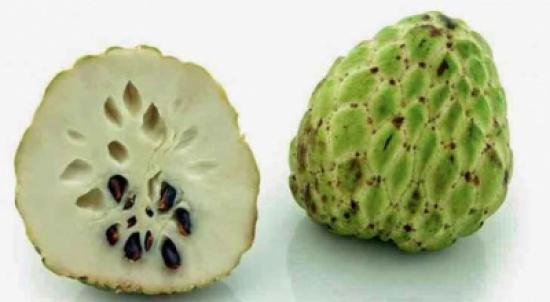 فاكهة القشطة ماهي فوائدها وكيف تؤكل المدينة نيوز