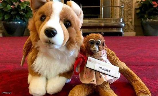 ملكة بريطانيا ترد دمية مفقودة لطفلة أسترالية