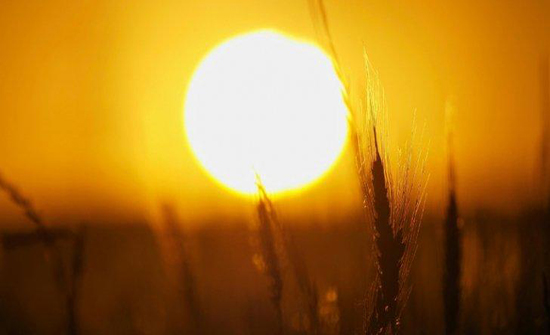 محاضرة حول فيزياء الشمس الخميس المقبل