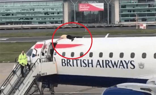فيديو : ناشط بيئي يصعد على سطح طائرة بريطانية احتجاجاً على تلوث المناخ