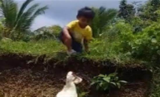 شاهد : لقطات طريفة لبطة تساعد طفلا للعثور على حذائه في الفلبين