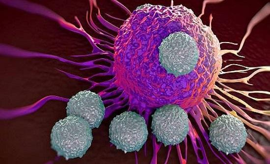 كيف تتحوّل الخلية الطبيعية إلى سرطانية؟