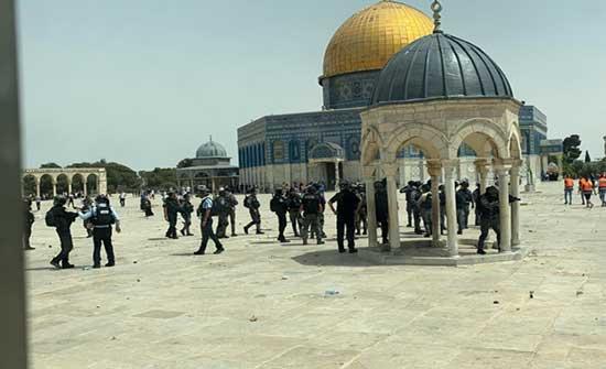 وسط دعوات لتكثيفها عشية عيد الأضحى - عشرات المستوطنين يقتحمون المسجد