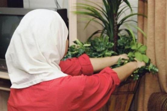 بحث تحسين الخدمات المقدمة للعاملات في المنازل