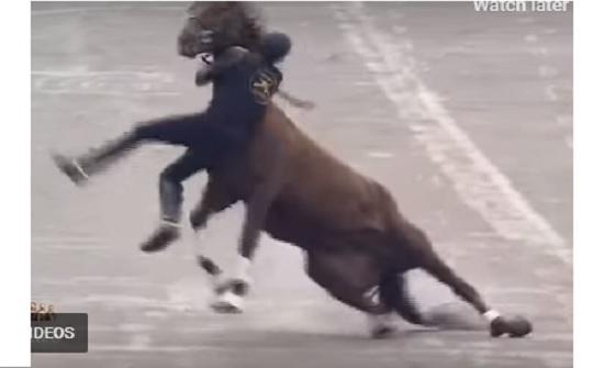 سقوط فارس من خيل أثناء عرض عسكري في المكسيك