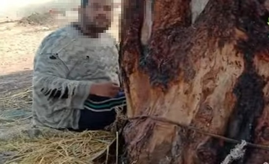 بالفيديو.. أم تقيد ابنها في شجرة منذ 15 عامًا لسبب غريب
