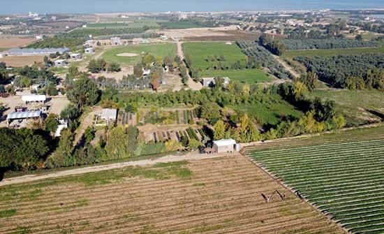"""وزارة الزراعة في غزة تطلق تحذيرا من """"كارثة كبيرة"""""""