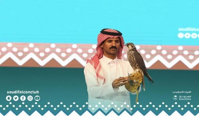السعودية: بيع 3 صقور بـ 70 الف دولار - تفاصيل