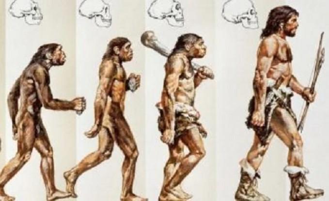كشف مفاجأة عن أشهر صورة لمراحل تطور الإنسان