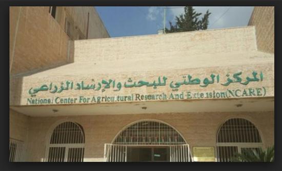 الوطني للبحوث الزراعية يدرب 90 مهندساً زراعياً فلسطينياً