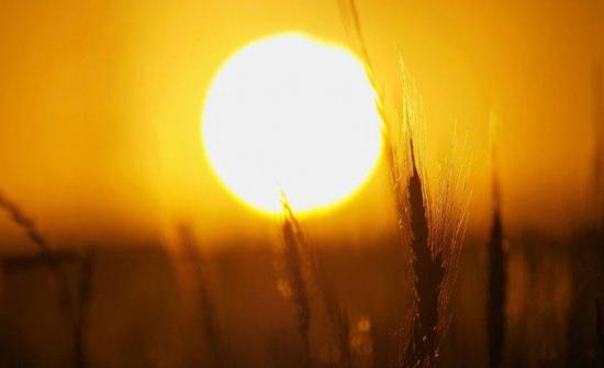 الثلاثاء : طقس حار نسبي في أغلب المناطق