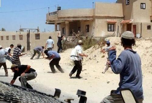 مستوطنون متطرفون يستولون على عشرات الدونمات شرق بيت لحم
