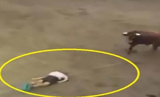 بالفيديو: ثور يجرُّ رجلاً فاقد للوعي بمهرجان لترويض الثيران في إسبانيا