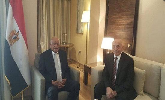 البرلمان المصري: مجلس النواب في طبرق هو الممثل الشرعي الوحيد للشعب الليبي