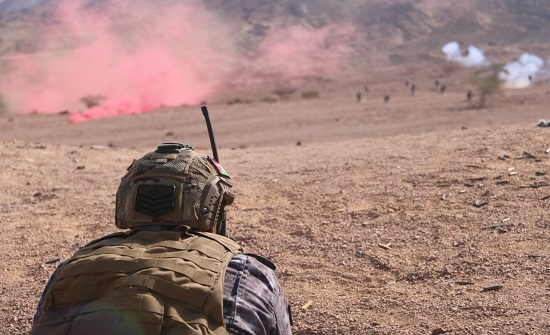 الجيش : القبض على متسلل حاول تهريب كمية من المخدرات للأردن