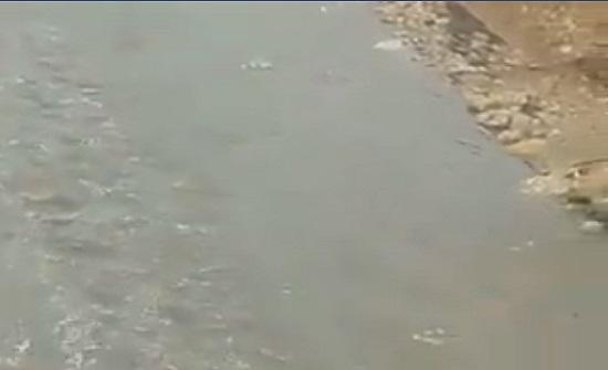 بالفيديو : ارتفاع منسوب المياه يغلق شارع وادي القمر بالزرقاء