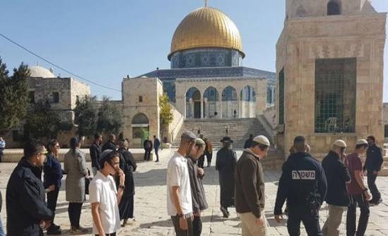 أكثر من 100 مستوطن متطرف يقتحمون الأقصى بحراسة شرطة الاحتلال