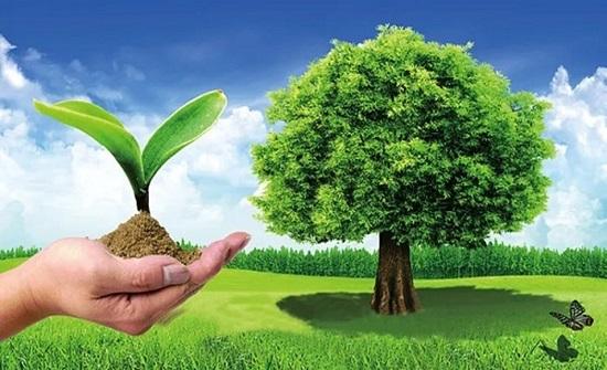 خبراء في مجال البيئة: تآكل طبقة الأوزون في الغلاف الجوي يهدد الحياة على سطح الأرض