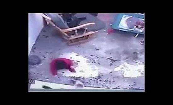 قطة تنقذ طفلا رضيعا من موت محقق في الصين  (فيديو)