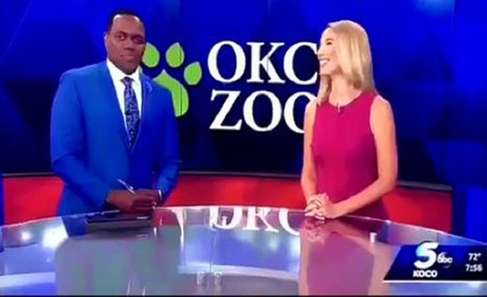 بالفيديو : مذيعة أمريكية تعتذر من زميلها بعد تشبيهه بالقرد