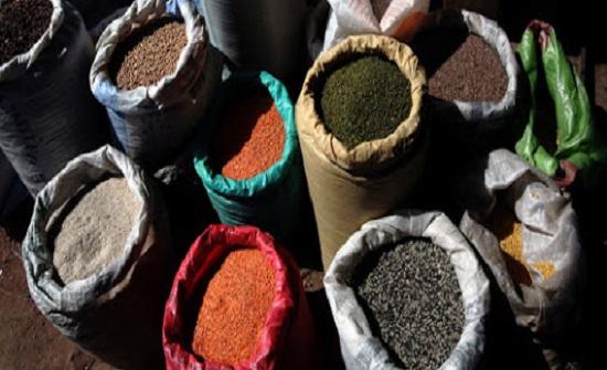 وزير الزراعة: نتطلع لتحقيق الاكتفاء الذاتي في قطاع البذور ورفع الطاقة الانتاجية