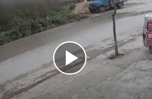 شجرة تطيح بقائد دراجة نارية بعد سقوطها في الطريق (فيديو)